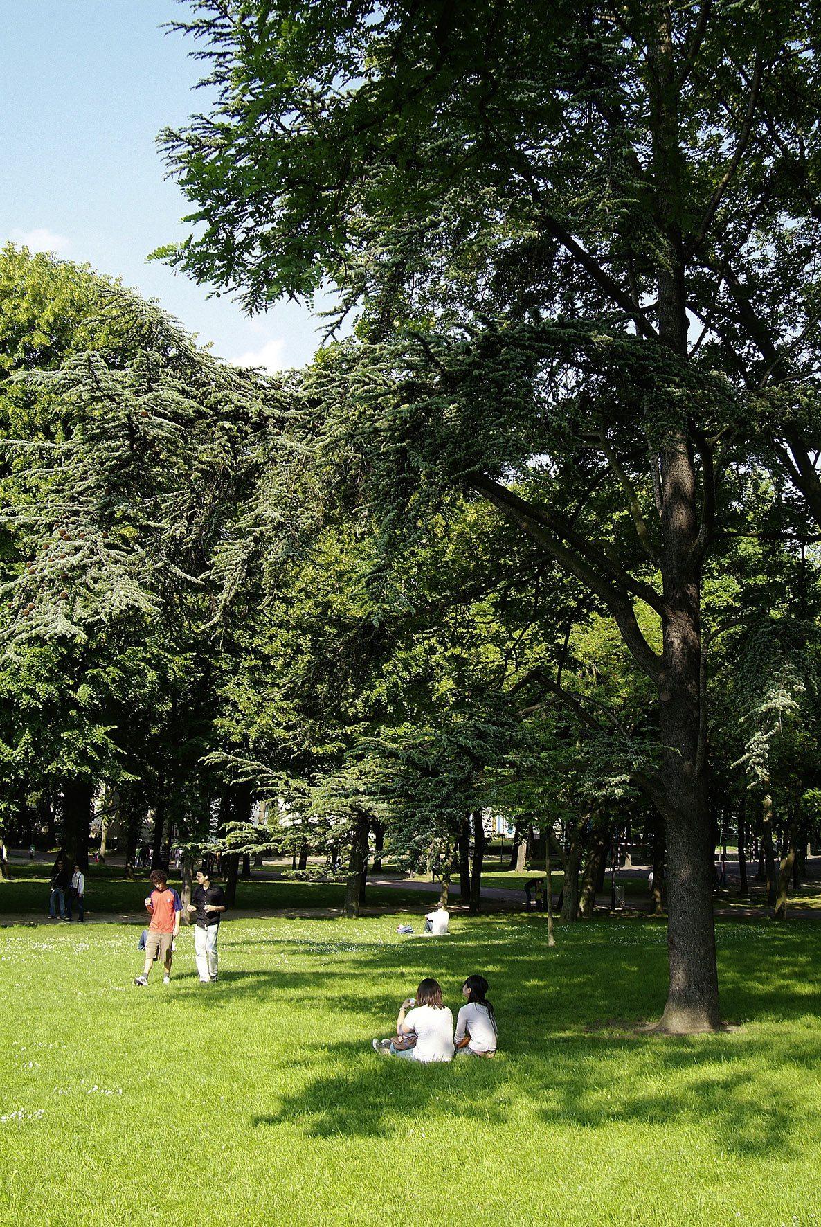 Projetez-vous d'étudier à Paris l'été 2014 ? Bienvenue à la Maison de Suède !